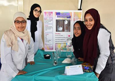 Grade 6 - Science Fair
