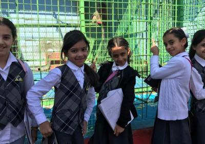 Grades G3 - Sharing the Planet: Zoo Visit